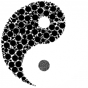 yin 1817577 1280 300x300 - How to Reform Democratic Elections to Be Fair